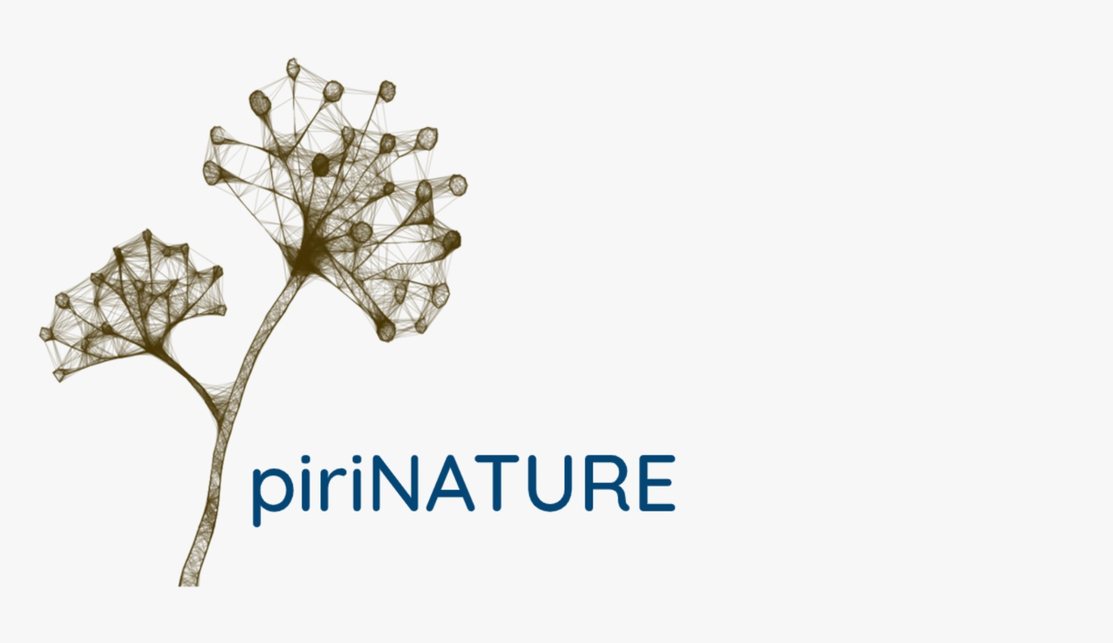PIRINATURE