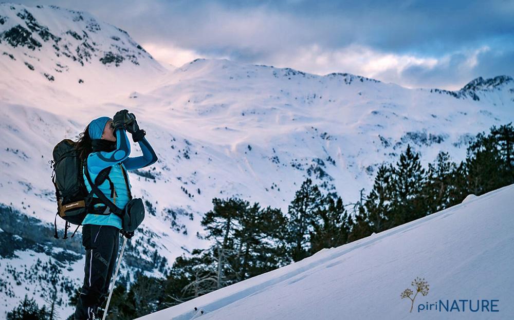 """""""Pirinature"""" —guías de montaña expertos en naturaleza y ecoturismo con sede en Benasque— lo ha hecho en las categorías de Atracciones Turísticas, Proyecto Inspirador, Idea con Futuro y Resiliencia y Liderazgo Transformador."""