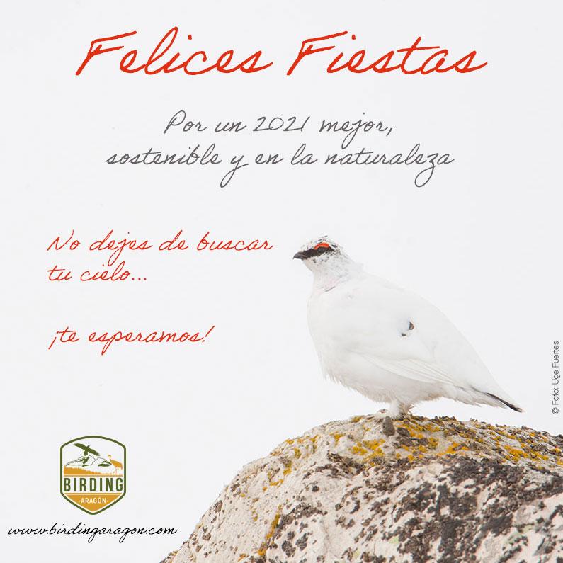 Felices Fiestas a todos desde Birding Aragón Por un 2021 mejor, sostenible y en la naturaleza. No dejes de buscar tu cielo.... te esperamos!!