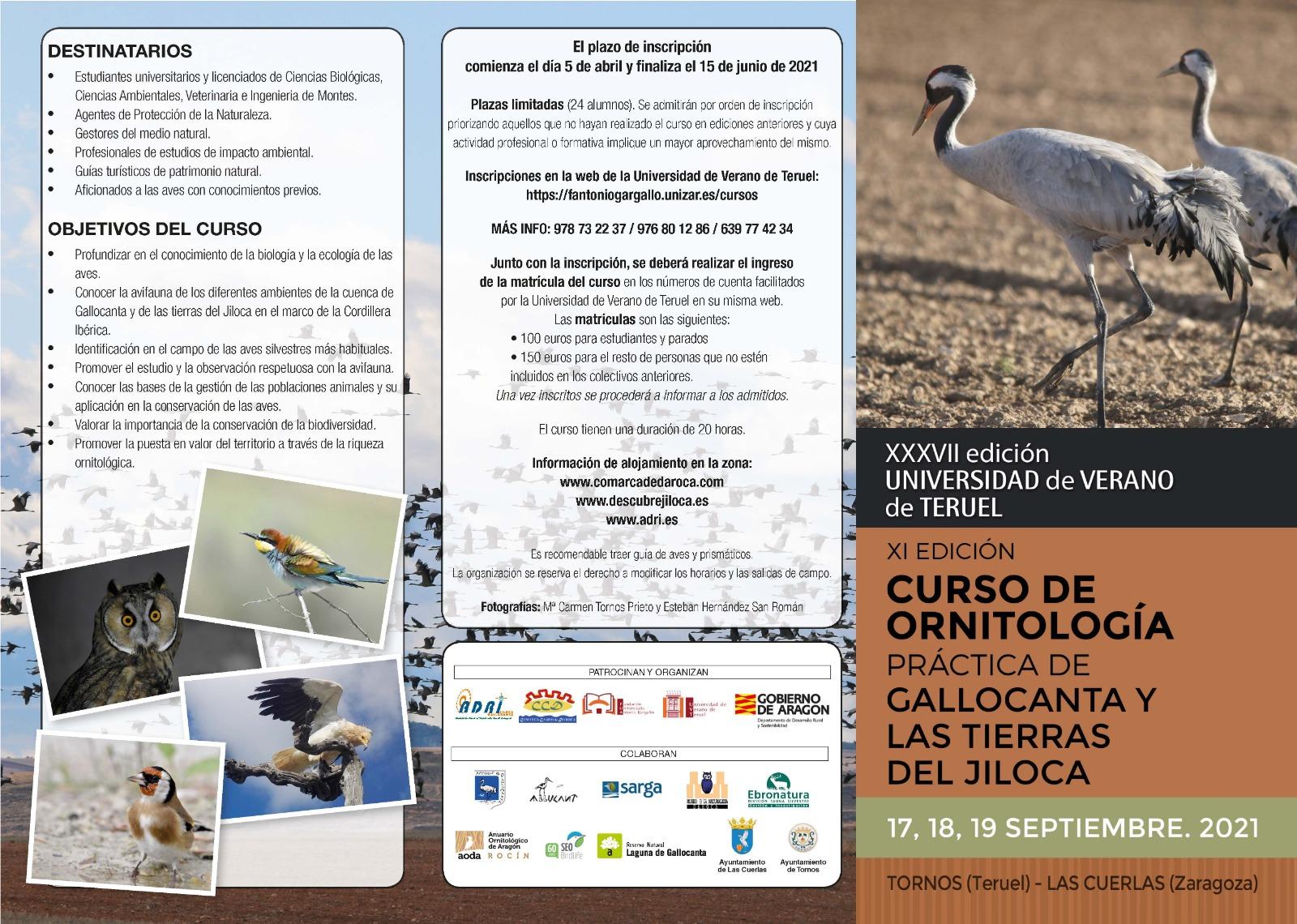 XI Curso de Ornitología práctica de Gallocanta y las Tierras del Jiloca