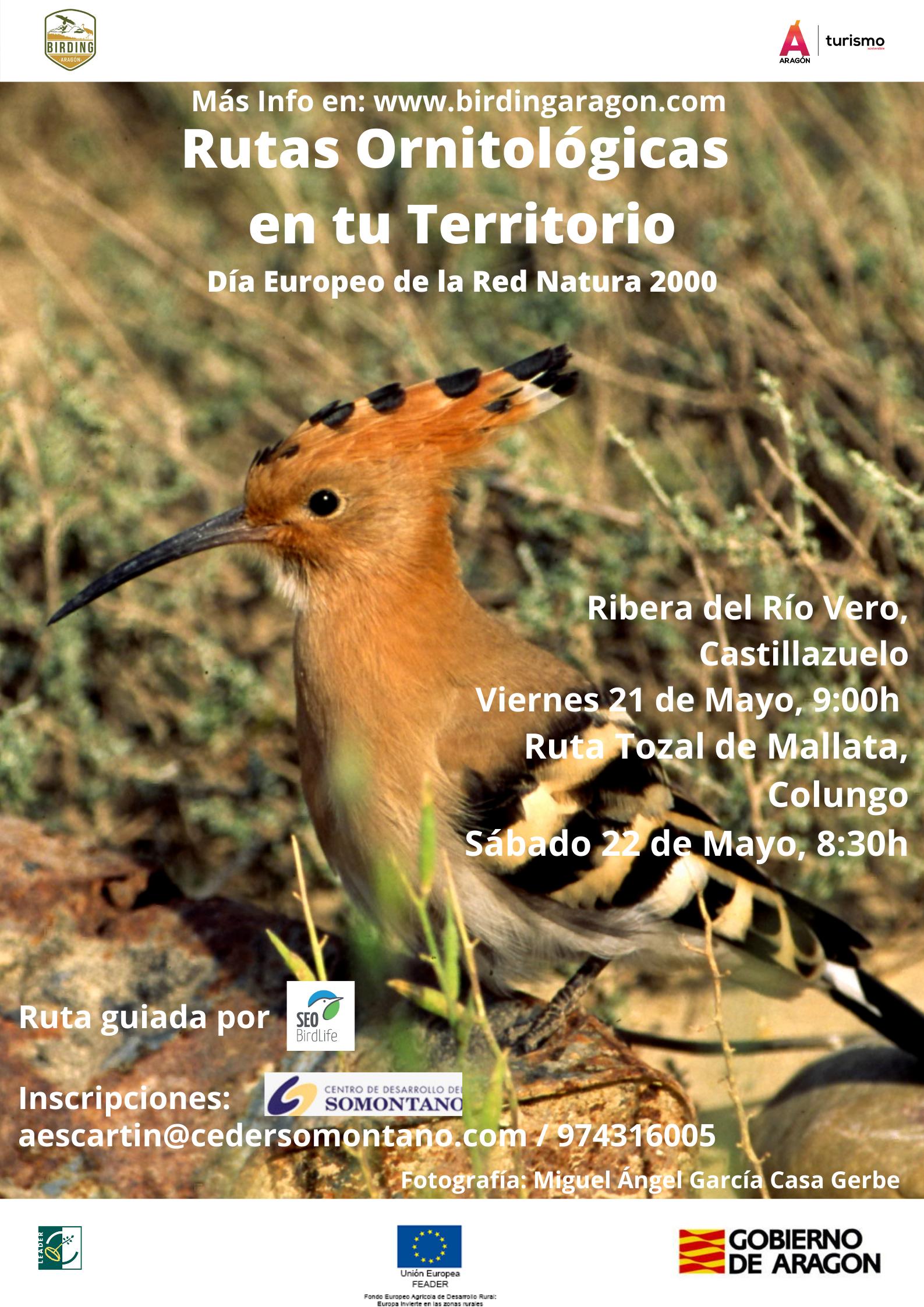 Birding Aragón comienza sus eventos ornitológicos en el Somontano