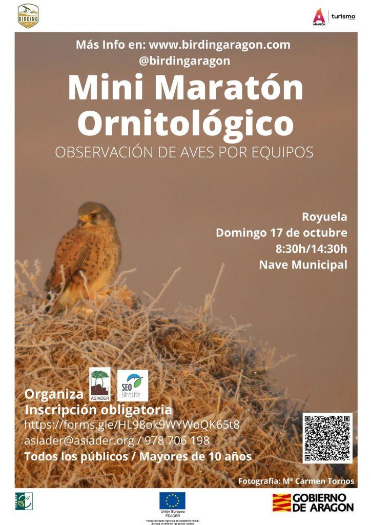 Mini maratón ornitológico con observación de aves por equipos